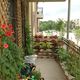 Zone 0. Balcony Permaculture
